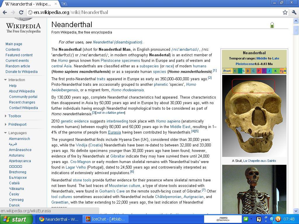 neanderthal lav panne