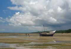 Mafia Island Boat 2