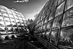 Spacy Place (Nicolas Pavlidis) Tags: windows blackandwhite bw cloud window architecture reflections fenster alien wolke greenhouse architektur sw grayscale spiegelung glashaus blackandwhitephotos schwarzweis blackwhitephotos zoologischergartengraz