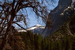 Yosemite Spring (karith) Tags: california spring yosemite karith snowcappedpeak tpslandscape