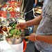 Making noodle salad