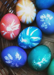 My Botanical Eggs 2011