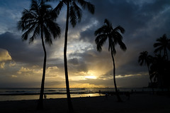 Waikiki Beach Sunset II - [EXPLORED] (andreaskoeberl) Tags: ocean light sunset sky sun beach clouds hawaii nikon pacific waikiki palm honolulu rays 1685 d7000 nikon1685 nikond7000 andreaskoeberl