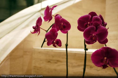 Mandarin Orchard Hotel - Flowers