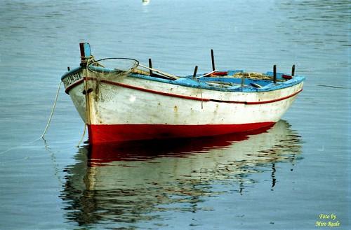 acquerello marino (aspra)