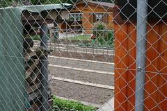 basel garden 016