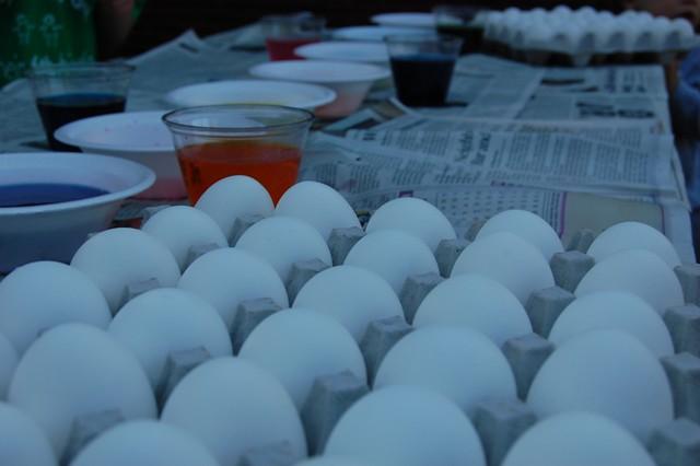 EggDying2