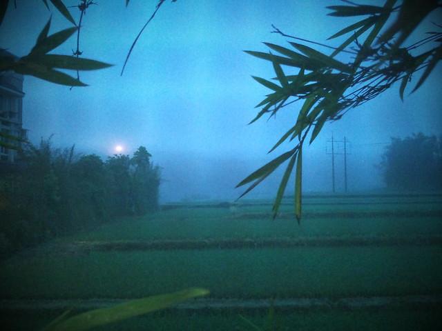 1000502 外頭起了霧 好美