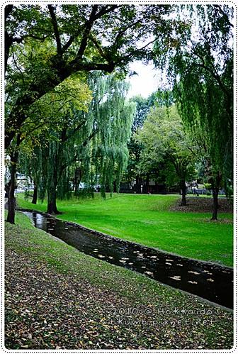 北海道大學 (3).JPG