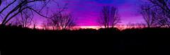 Purgatory Park Sunset Panorama (Mercenaryhawk) Tags: pink trees sunset panorama minnesota clouds canon landscape eos rebel purple minnetonka 550d t2i