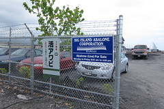 BIG ISLAND ABALONE CORPORATION