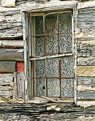 Lace Curtains (Picture Taker 2) Tags: beautiful closeup outdoors funny colorful curtains unusual upclose rare
