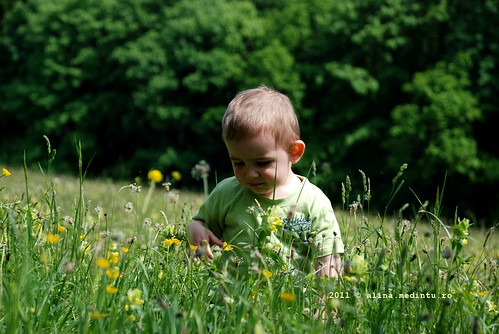child on a field of grass