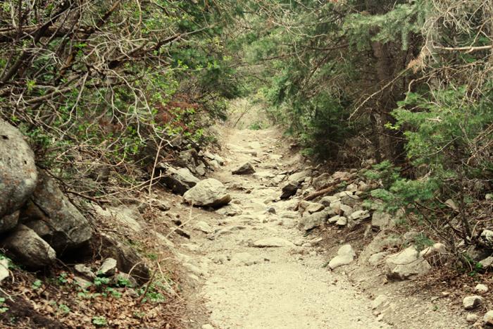*Rocky Path*