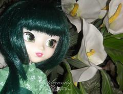 DSCN45531_Pullip_HauteNY_ (applecandy spica) Tags: flowers plant flower green leaves leaf doll kimono pullip custom haute hauteny hautenewyork