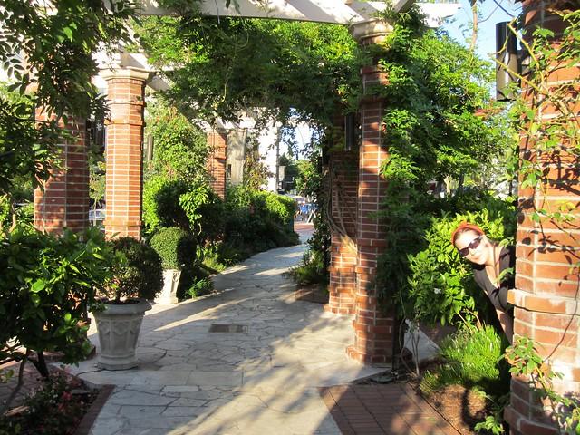 wp rose garden