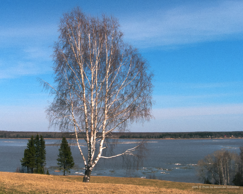 Весенний этюд 2005 © Photo by Alexander Kondakov