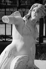 versione bn (Mary.rose2010) Tags: blackandwhite nikon italia arte napoli fontana bianco forme scultura marmo mitologia terrore villacomunale erosione neoclassicismo mutilazione