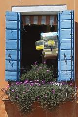 Balcony with Bird Cage, Burano (Peter Cook UK) Tags: flowers bird window balcony cage shutters burano