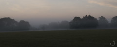2016_septembre_DSC5762 (brunata61) Tags: paysage levdesoleil brume stouensurmaire sony a58 normandie