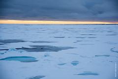 2016-08_Spitzbergen-226.jpg (roli.laesser) Tags: arktis reisen spitzbergen svalbard spitsbergen