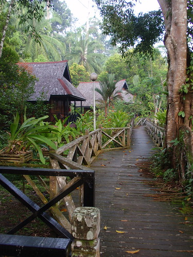 Sepilok Nature Resort, Sabah