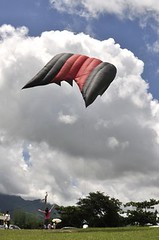 20110702-特殊風箏2-1