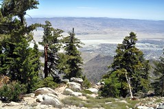 View from Mt. San Jacinto State Park (janetfo747 ~ Pray for Peace) Tags: sky pine day desert cloudy palmsprings clear mtsanjacintostatepark skytram blud