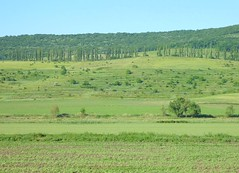 Landscape in Moldova (Frans.Sellies (off for a while)) Tags: moldova moldavia moldawien republicamoldova moldavi     repblicademoldavia p1320606
