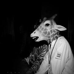 鹿。 (SONG TSE) Tags: friends people bw pentax 2008 黑白 1x1 k10d lens5