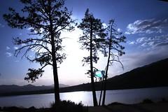 LakeHemetMoonnTrees1 (charlesmonroe98) Tags: california pink lake fish forest fishing san meat tagged national hemet idyllwild trout bernadino