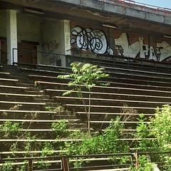 Pentacon Six + MC Biometar 2,8/120 - Abandoned Soccer Stadium in Brno 05 (Kojotisko) Tags: abandoned stadium ruin brno cc velvia creativecommons czechrepublic pentaconsix velvia50 fujifilmvelvia50 biometar biometar28120 mcbiometar28120