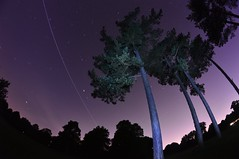Space Station trail (Blakesy Photography) Tags: shadow sky tree nature station night forest star long exposure space trail