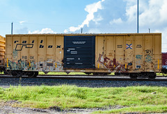 (o texano) Tags: human houston texas graffiti trains freights bench benching worms a2m adikts lewis