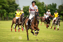 Polo. The sport of kings. (Evelina Jakovlevskaja) Tags: horse equestrian horses horsesofinstagram pony instahorse love dressage equinephotography pferd horseriding mare jakovlevskaja gelding showjumping horsephotography cheval western jumping ponies cavalli caballo horsebackriding thoroughbred equine bay quarterhorse eq nikon eventing