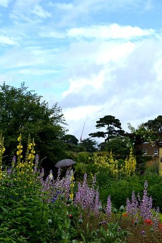 A Typical English Garden