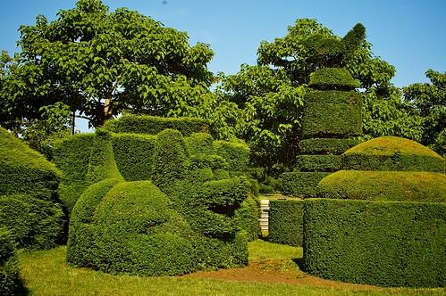 Topiary garden.
