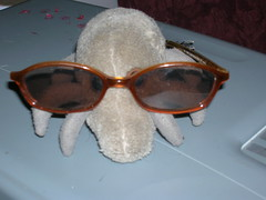 Dust Mite wears sunglasses at night