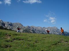Pyrene Summer Camp_Minairons Camp (Club Pyrene) Tags: trek summercamp aventura lacerdanya pirineu pyrene campamentos sostenible coloniesestiu
