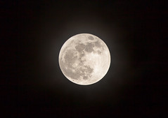 Perigee Supermoon (Jim Boud) Tags: moon night eos texas houston 5d lunar extender markii perigee canonef70200mmf28l perigeemoon jimboud 5dmarkii supermoon canon5dmarkii jamesboud 2xiii