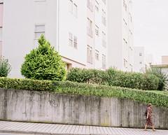 Divided We Fall (iconicturn) Tags: building 120 film portugal analog mediumformat apartment porto mamiya7