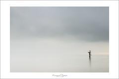 to dive between no where (Emmanuel DEPARIS) Tags: bridge beach pose photography seaside nikon long exposure normandie normandy emmanuel ponton d800 longue normandi deparis