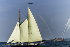 Tall ships 2016 When and If (Artemortifica) Tags: boats chicago navypeir tallships band clouds fountains garden lakemichigan sailors sails skyline summer illinois