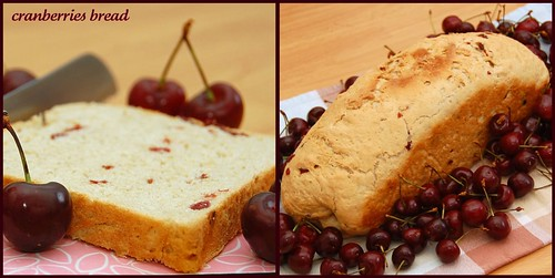 Collage di cranberries bread