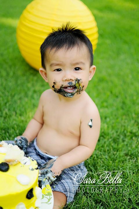 Taylan283-1 copyweb