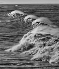 20140614_1270_1D3-125 The Wave (johnstewartnz) Tags: canon eos 1dmarkiii 1d3 1dmark3 70200mm wave waves sea newbrighton beach blackandwhite bw monochrome yabbadabbadoo wonderfulworld eyegrabber unlimitedphotos wonderfulword 7dwf