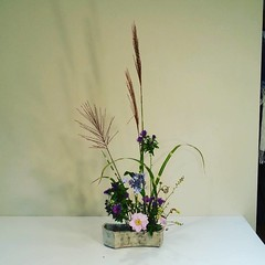 Jenny's #ikebana