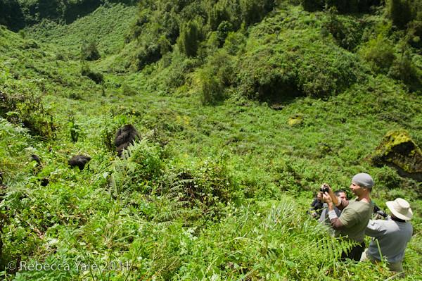 RYALE_Rwanda_Uganda_Safari-20