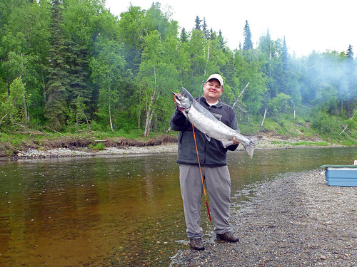 King Salmon by dean.franklin