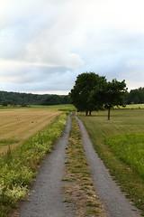 Tractor Path (AdurianJ) Tags: pictures canon europa sweden dslr scandinavia suecia lenses    nrdico escandinavia     adurianj